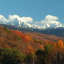 *冠雪の八ヶ岳連峰と秋の紅葉。見事なコントラストに感動!