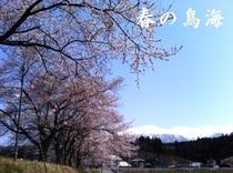 ■春の鳥海
