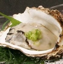■初夏の味覚 岩牡蠣