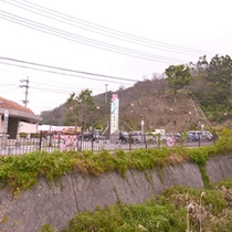 *観光スポット(名護城跡公園)