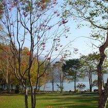 【風景*初秋】初秋の環湖荘前*高原の秋は10月上旬からとやや早め