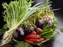 京の食材「京野菜」