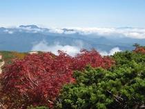 秋の八方尾根
