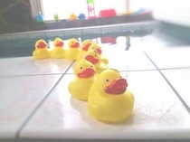 お風呂にもおもちゃが沢山♪