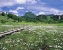 志賀高原「田の原湿原」