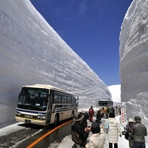 雪の大谷ウォーキング