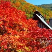 大町の紅葉スポット『霊松寺』