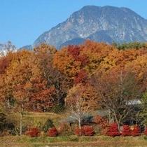 紅葉の『有明山』安曇野からの眺望
