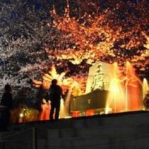 舞鶴山のサクラと将棋供養塔。