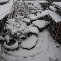 しんしんと降る雪。中庭の雪景色。
