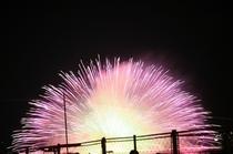 信州一の3万発の諏訪湖の花火大会 1