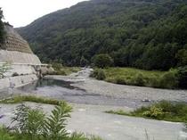 南アルプスの川はきれいで冷たいです。