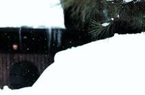反町潤 写真5 「冬の玄関」