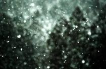 反町潤 写真10 雪 ハート