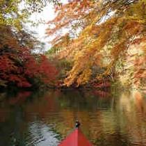 秋 カヌー