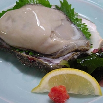 天然の岩牡蠣(磯ガキ)料理(例)