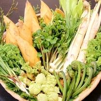 【春】筍(たけのこ)♪や春の山菜♪