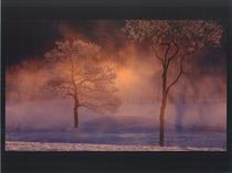 冬:朝の輝き