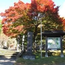 秋の土津神社(はにつじんじゃ)