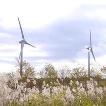 布引山の風力発電