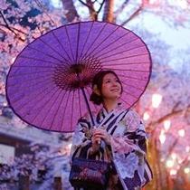 温泉街の夜桜に包まれて♪