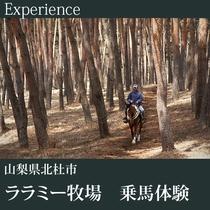 ▼ララミー牧場 乗馬体験B