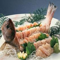 旬魚の姿造りの一例