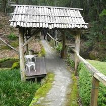 浴場までの道からは梅やホタルなど四季折々の景色がお楽しみいただけます。