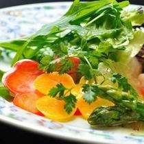自家農園で採れたお野菜サラダ(イメージ) 季節によって取れるお野菜をお楽しみ下さい