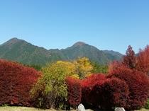 湯原の紅葉風景