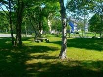 アネックスアルカスの庭