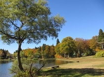 初秋〜上の平高原・巣鷹湖