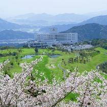 13.桜越しホテル