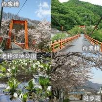 老神温泉内に「吊り橋」がございます。