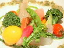 有機野菜標準サイズ