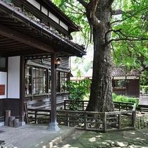 ◆深田久弥 山の文化館