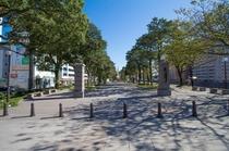 ホテル前の散歩道