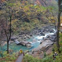 *抱返り渓谷/奇岩や急流、大小の滝をご覧頂けます。つり橋「神の岩橋」からの眺望は見事です。