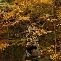 箒川へ流れる滝