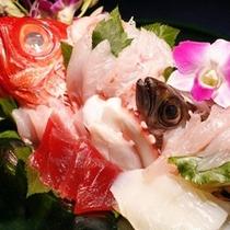 【料理】コース料理(金目鯛尽くし お造り)