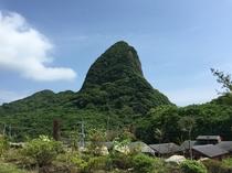 田舎やから見える竹山