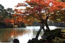 秋のおすすめスポット(兼六園)