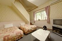洋室(ロフトタイプ)一例