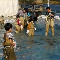 庄川鮭まつり