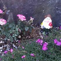 お花の傍にはお人形