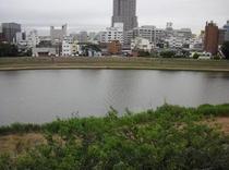 デラックスシングルから見える桜川③