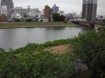 デラックスシングルから見える桜川