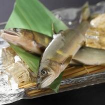 *お魚(一例)