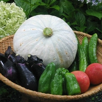 *野菜(イメージ)