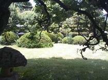 新館から庭
